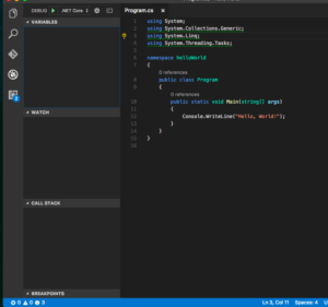 Visual Studio Code Debug Pane Not Running