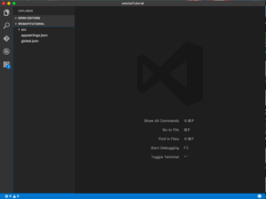 Initial Directory opened with VS Code