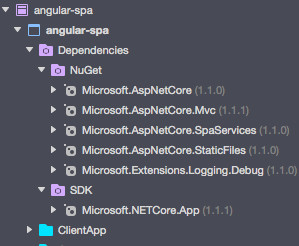 Angular SPA Directory Structure - Dependencies